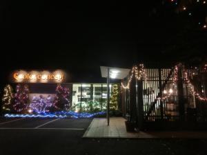 クリスマスイルミネーション2014Ⅱ